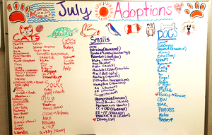 July adoptions Updated