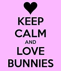 Love bunnies 2