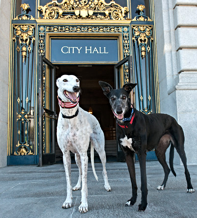 Mila and Lucca at City Hall