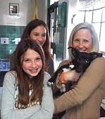 Quigglie adopted 2