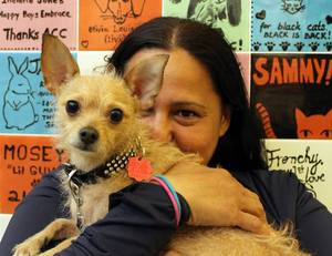 Daphne visits with adopter