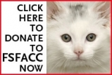 Click_to_donate_kitten