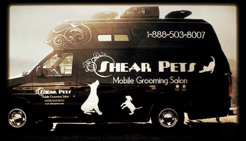 Shear pets