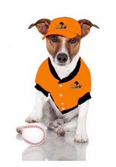 baseball dog 2 2